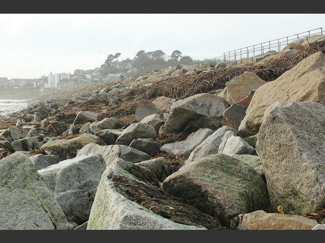 Seaweed Cast and Clearance after Storm Marine Environmental Images