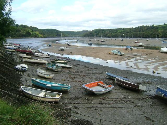APHOTOMARINE - A photographic guide to aid the recognition and identification of The Fowey Estuary Shoreline Habitats and Intertidal Zone Images