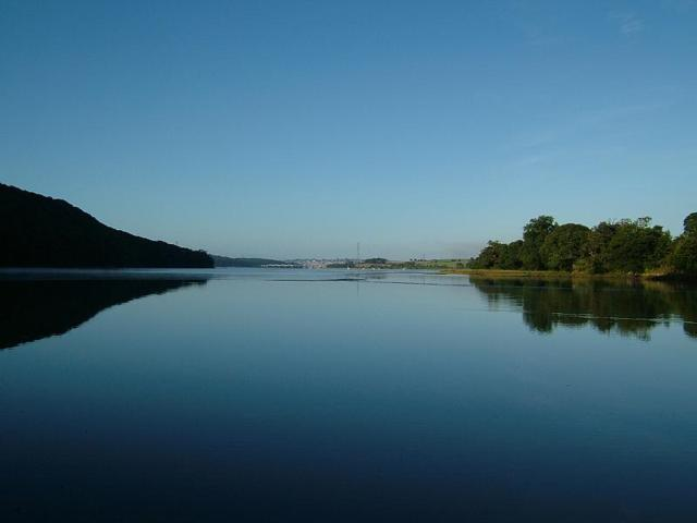 River Tavy Estuary Shoreline Habitats and Intertidal Zone Images
