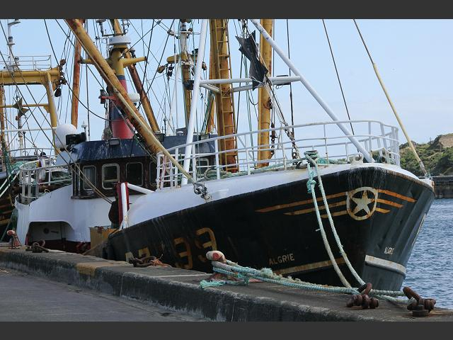 Algrie PZ199 Fishing Vessel Trawler Images